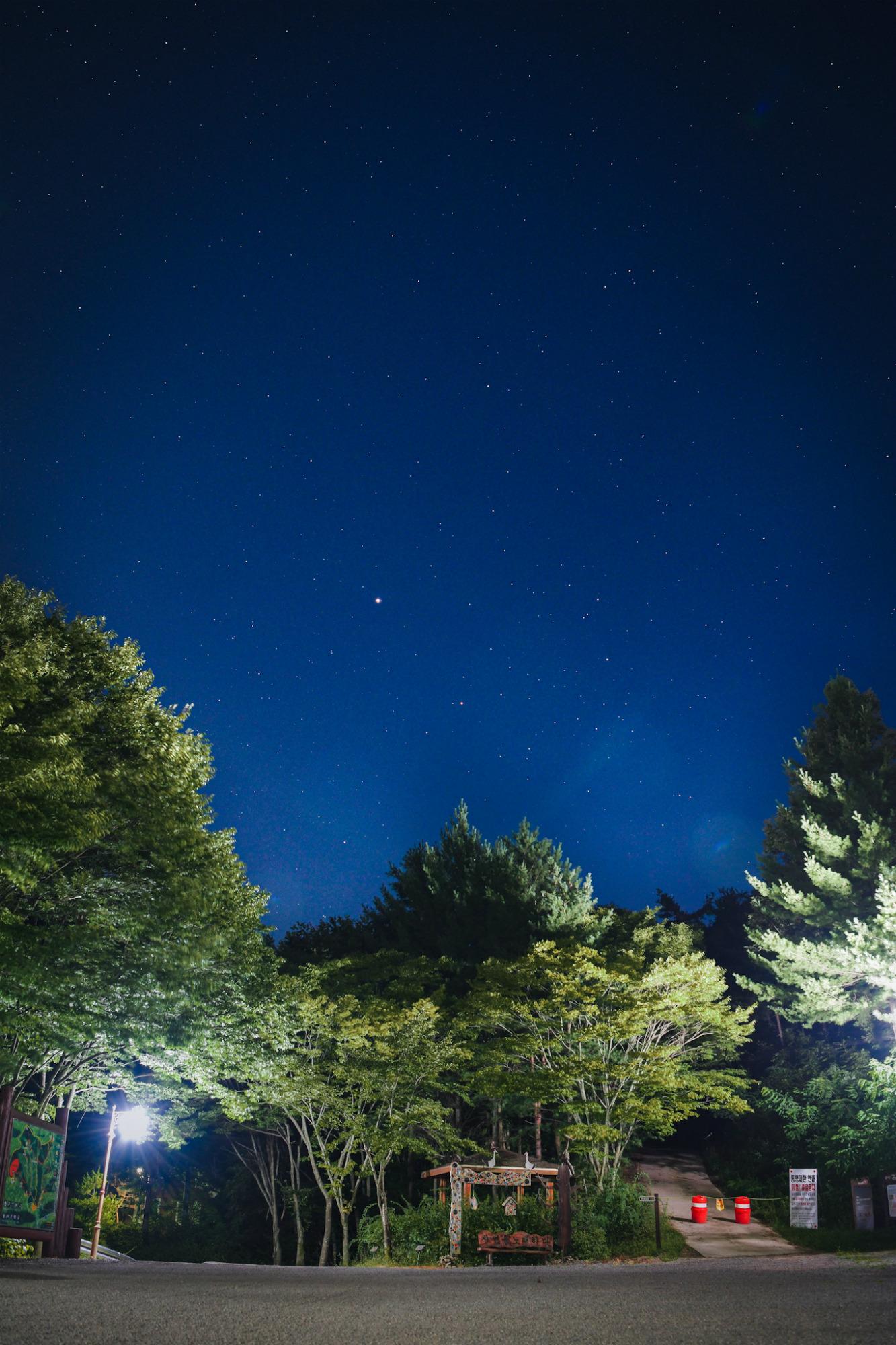 청송자연휴양림의 밤