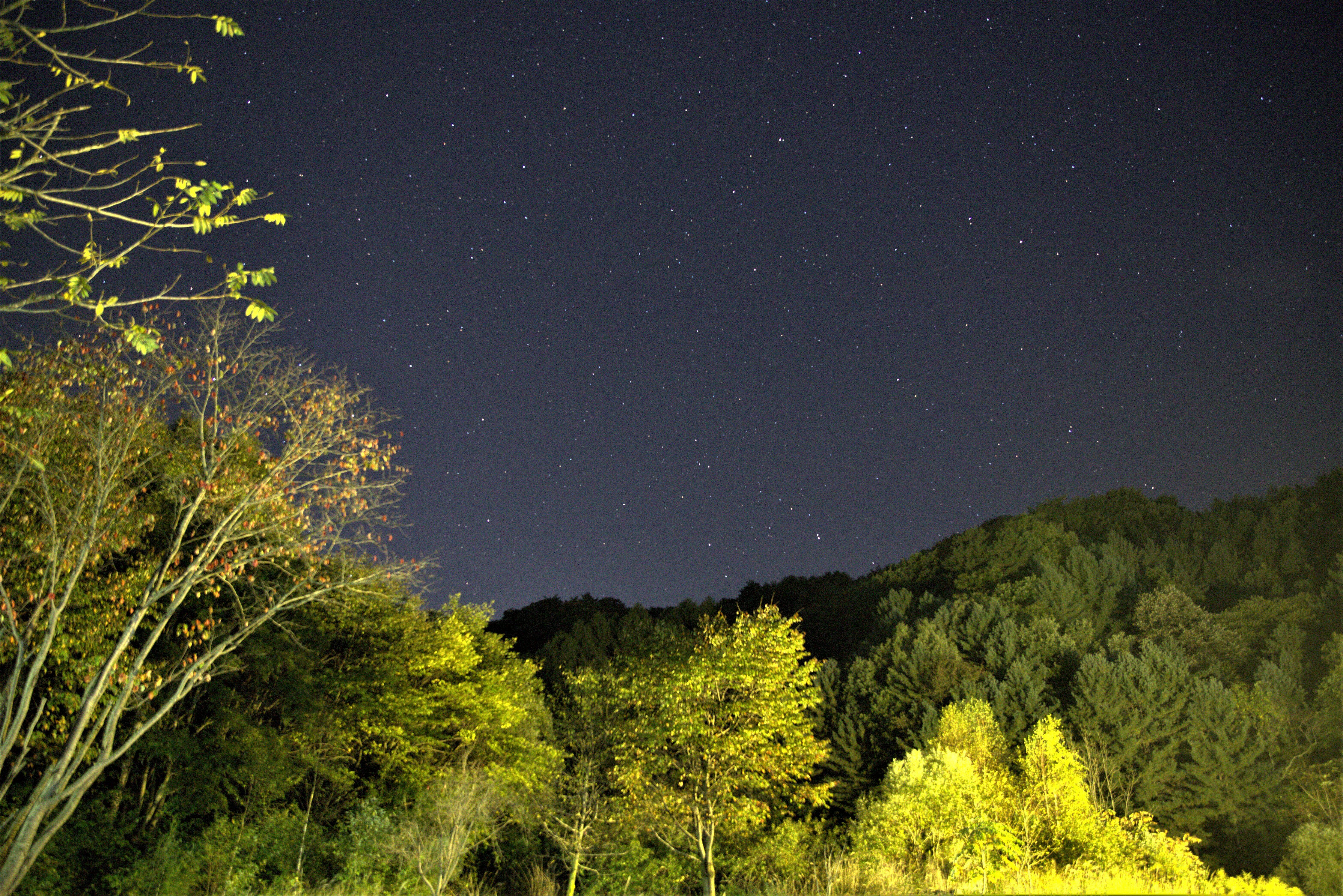 별이  쏟아지는 밤