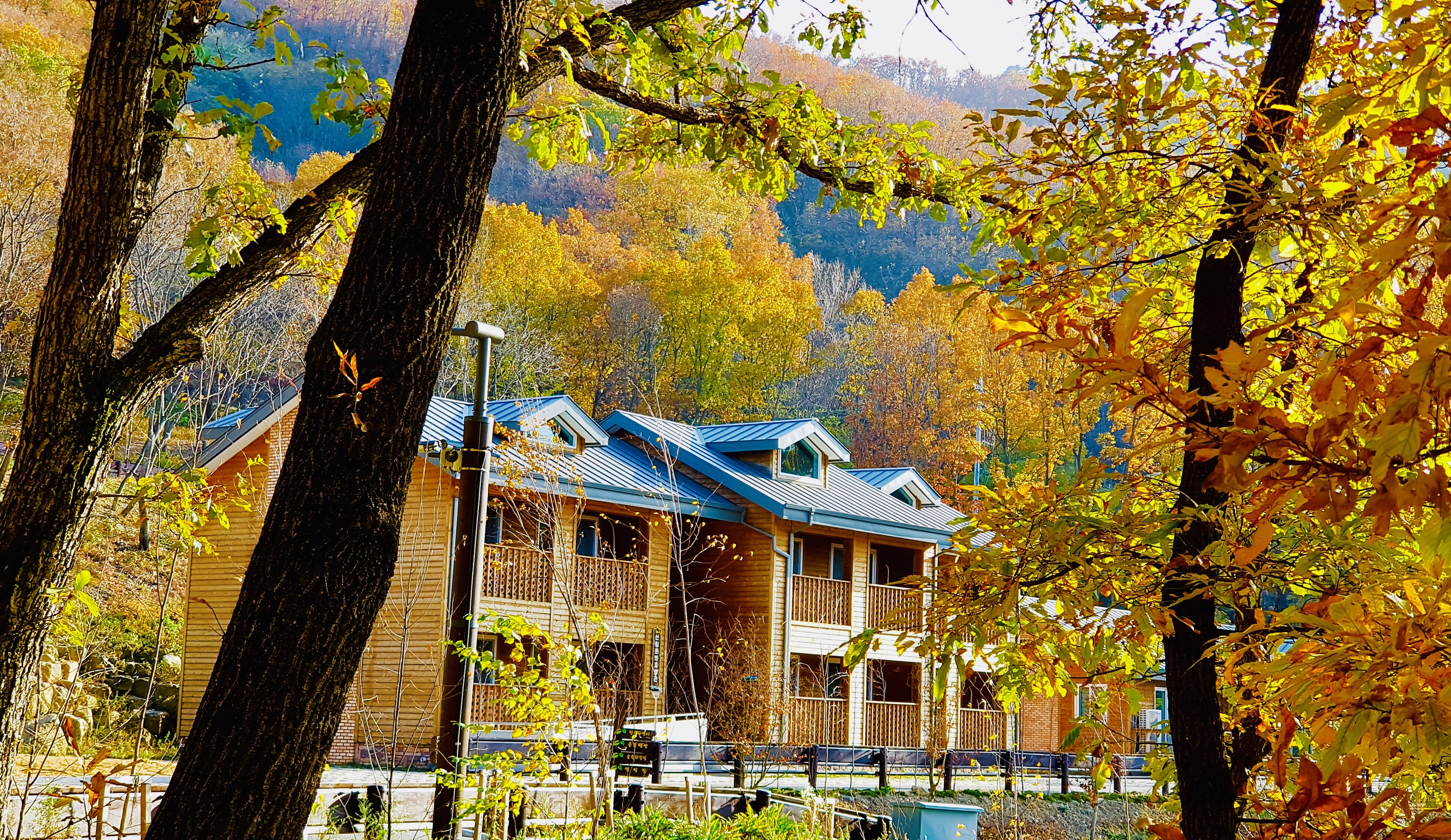 가을 산림문화휴양관