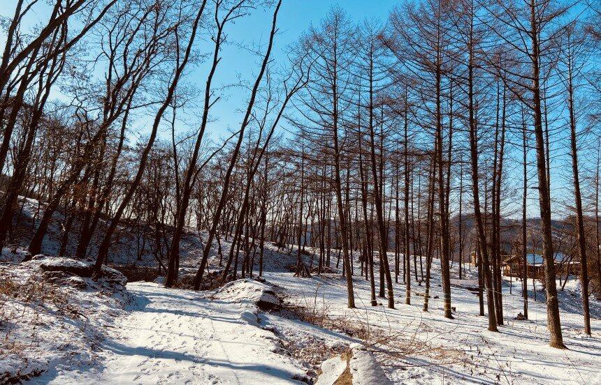 겨울 무장애산책로