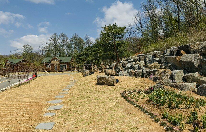 소나무정원