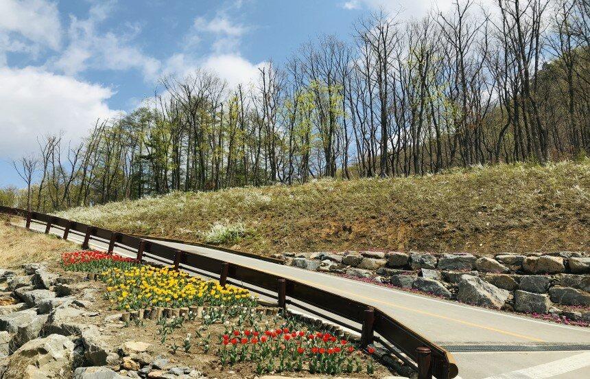 초봄 휴양림