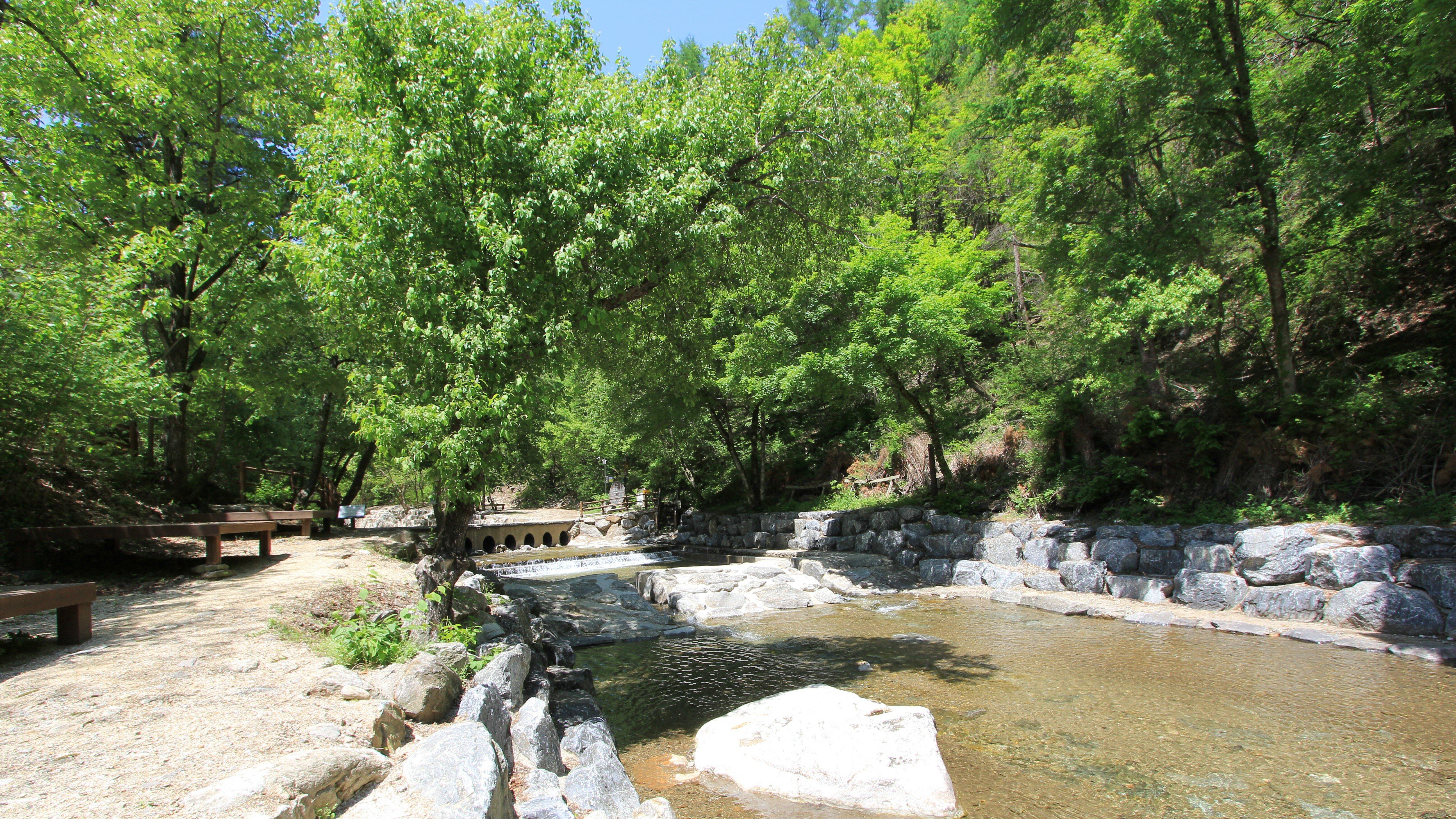 강씨봉자연휴양림 계곡(봄)