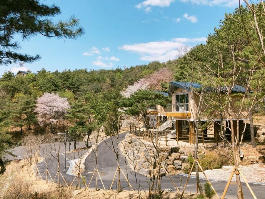 두루웰숲속문화촌 춘경
