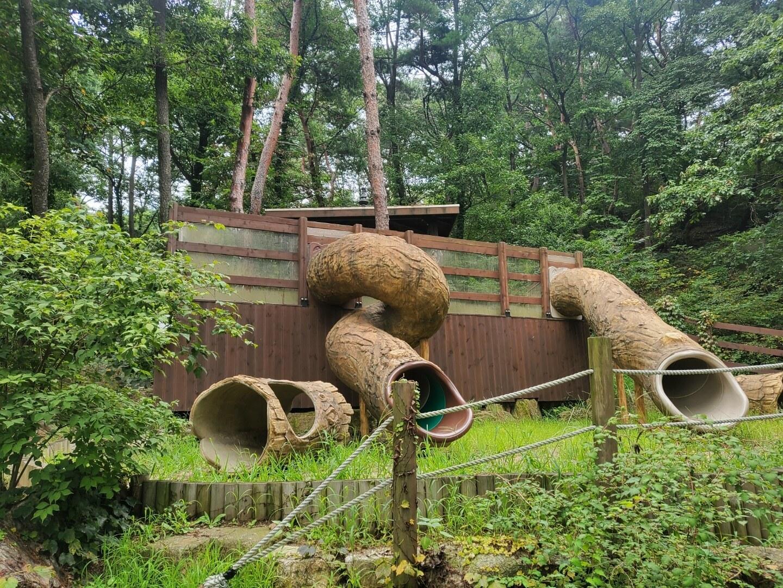 9월 용인자연휴양림 - 오감의숲