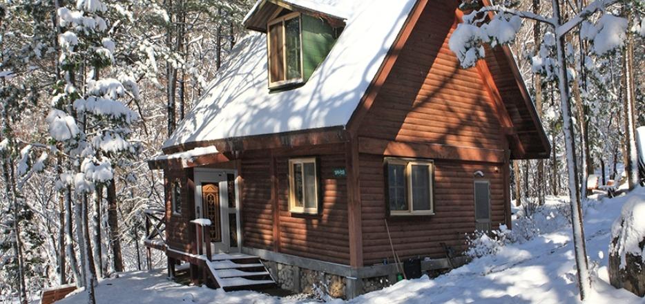 숲속의집 겨울
