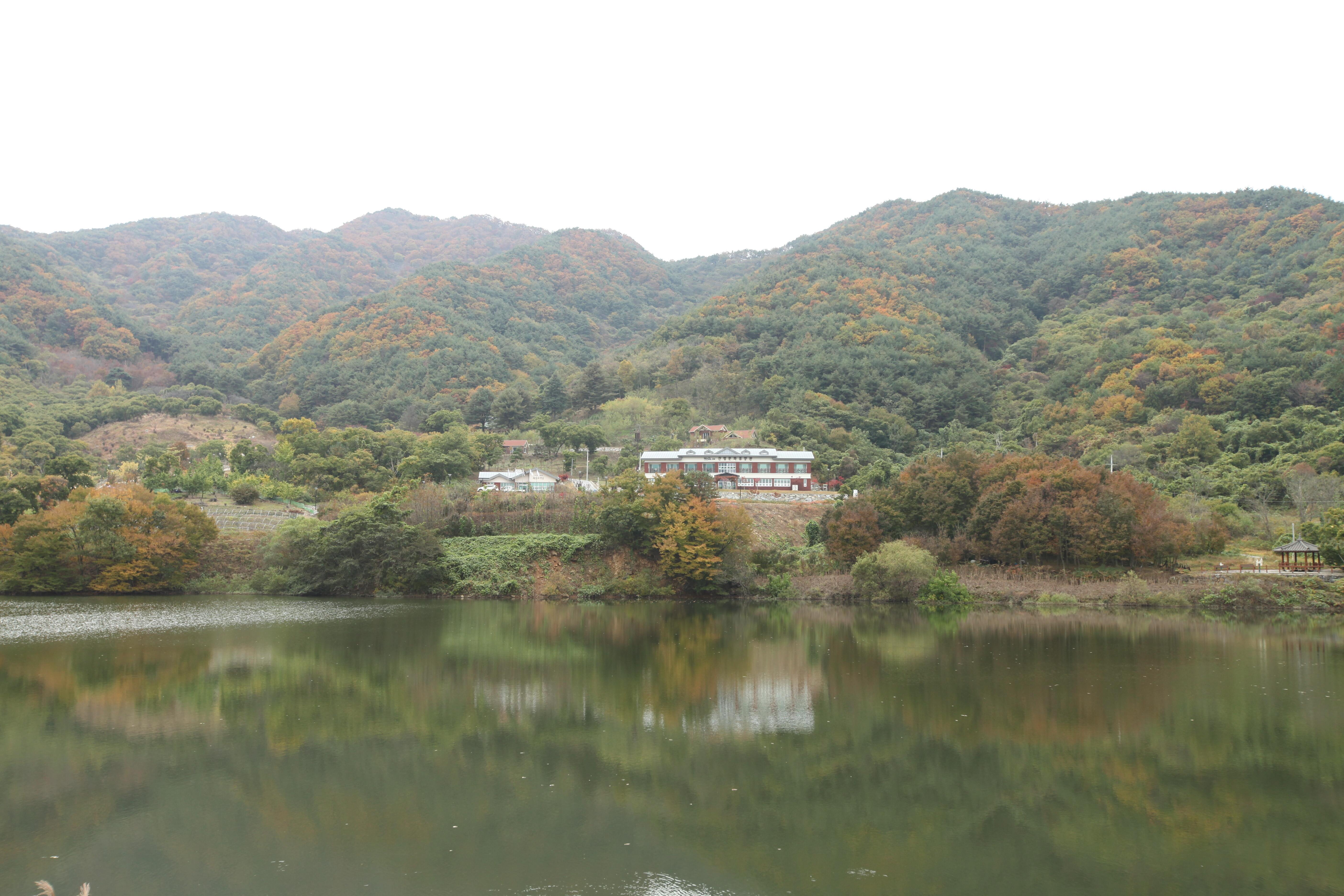 산수유자연휴양림 전경2