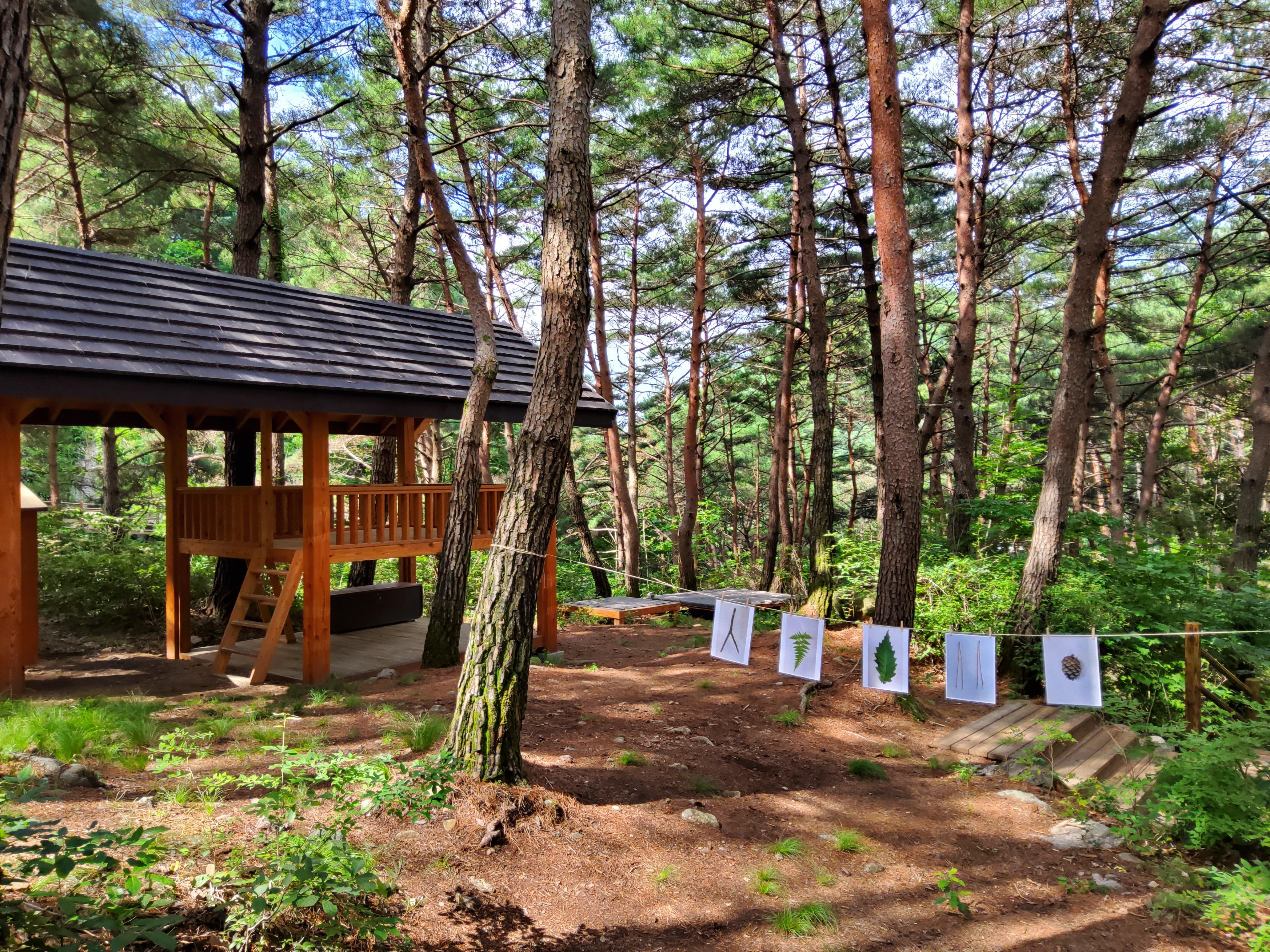 숲속도서관