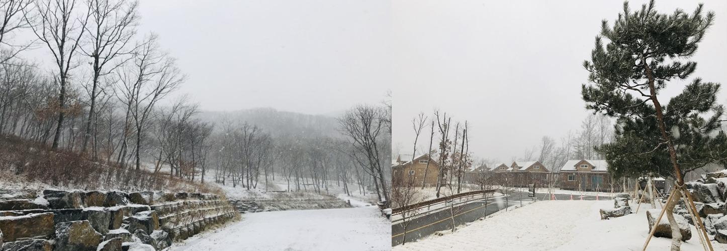 겨울 메인이미지1