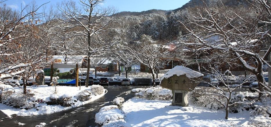 휴양림 겨울