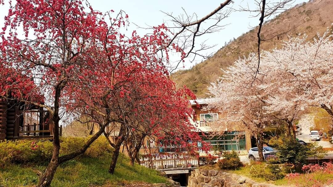 봄(휴양관)