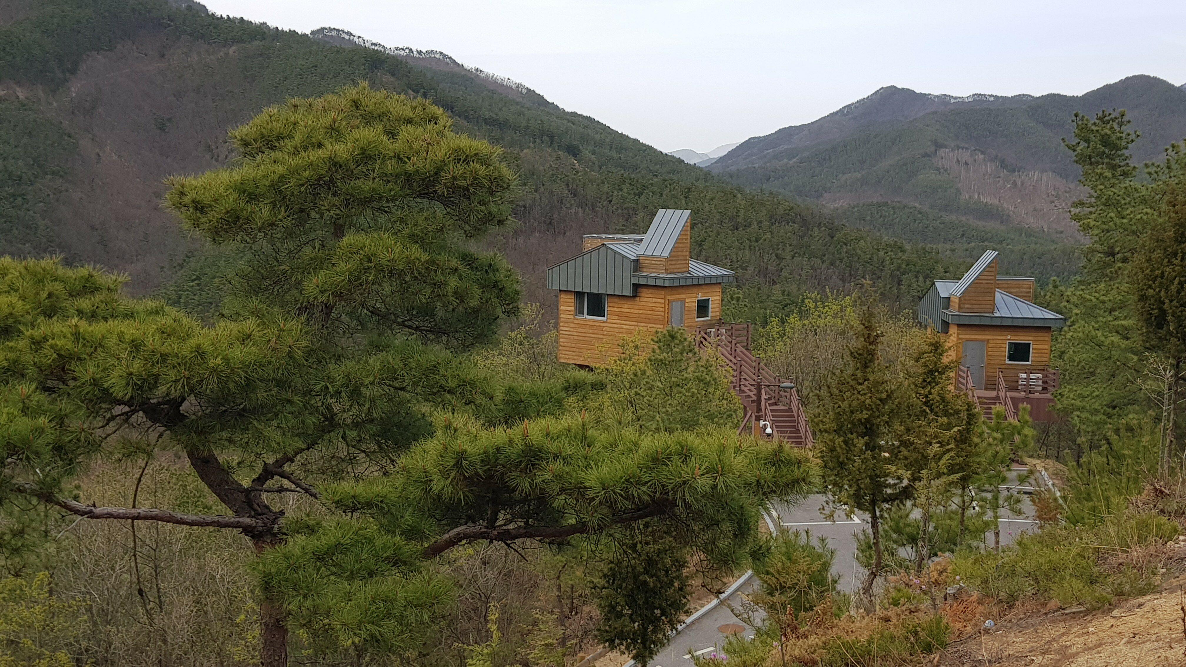 숲속 나무집