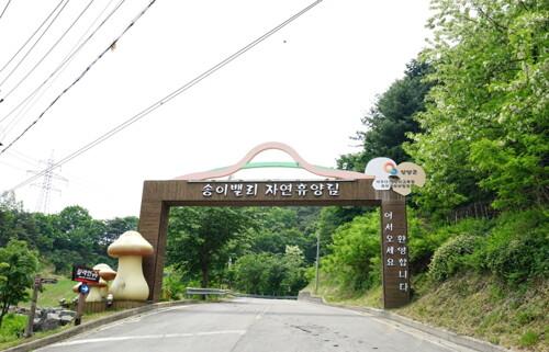 (양양군)송이밸리자연휴양림