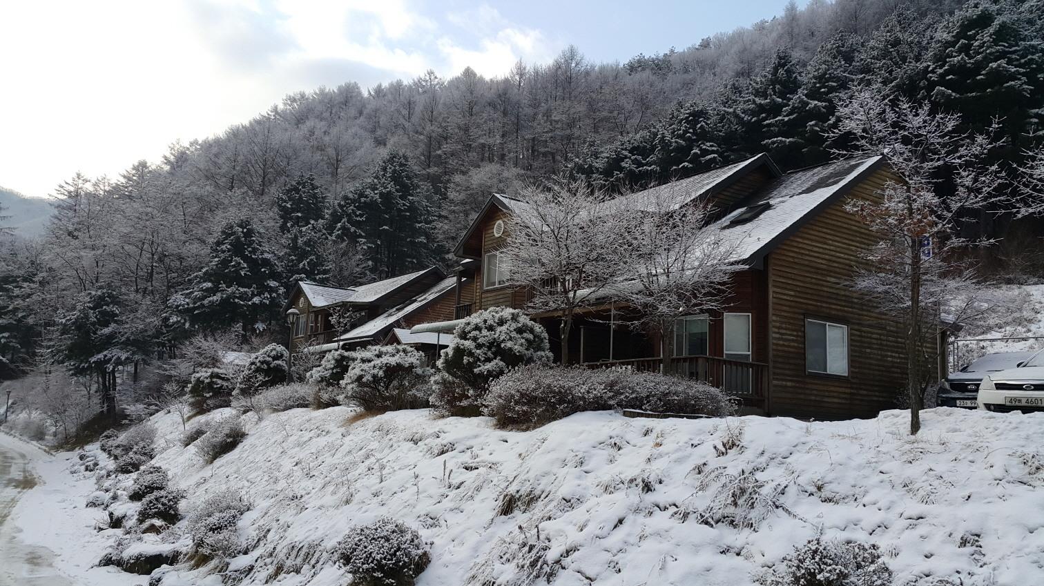 백운산자연휴양림 눈덮인 연립동풍경