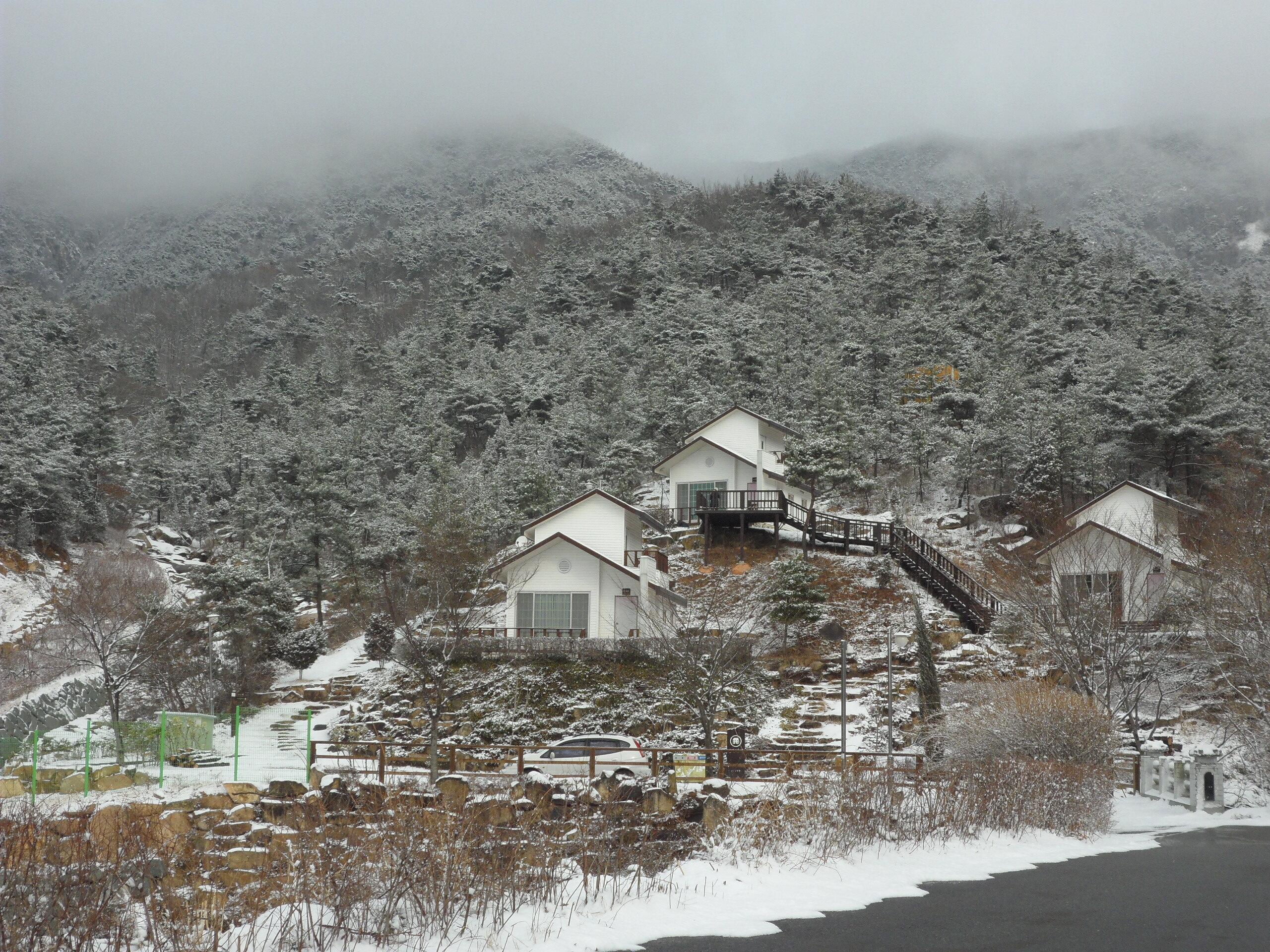 겨울  숲속의 집 전경