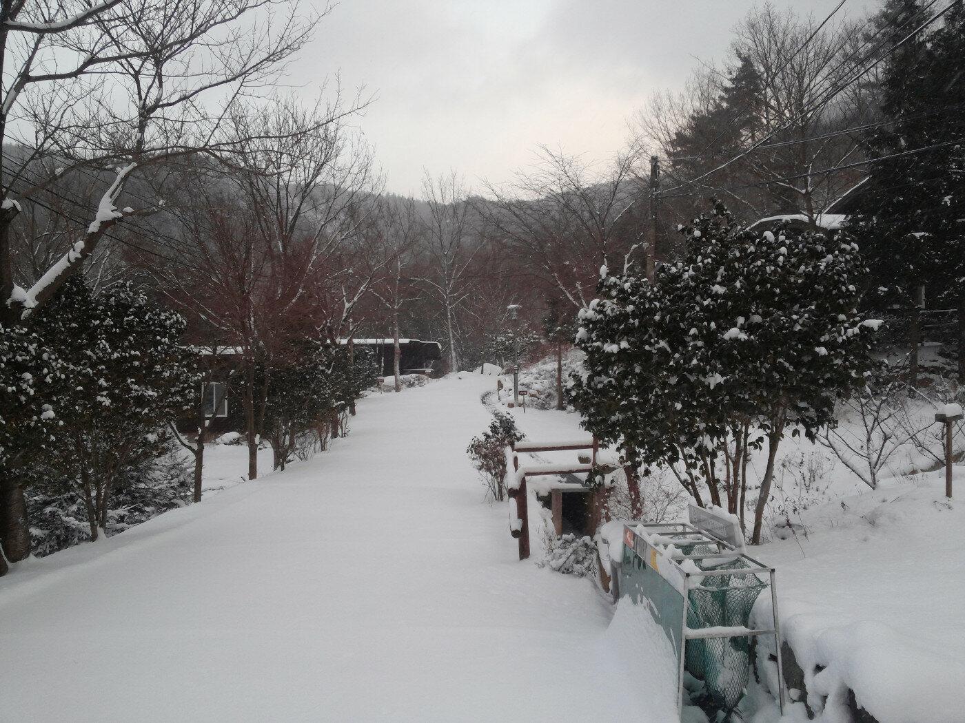 겨울 사진..