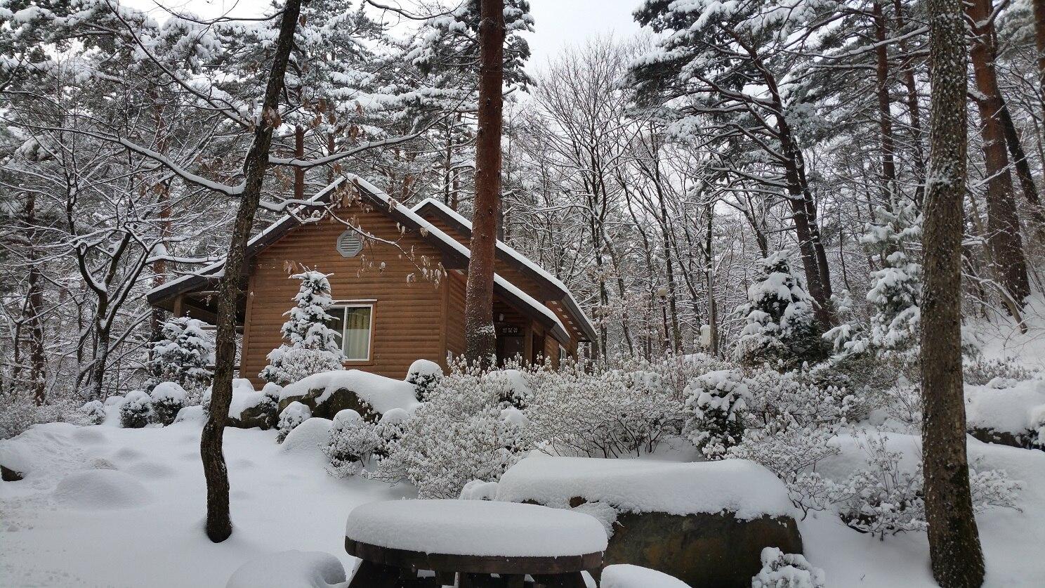국립대관령자연휴양림 숲속의집