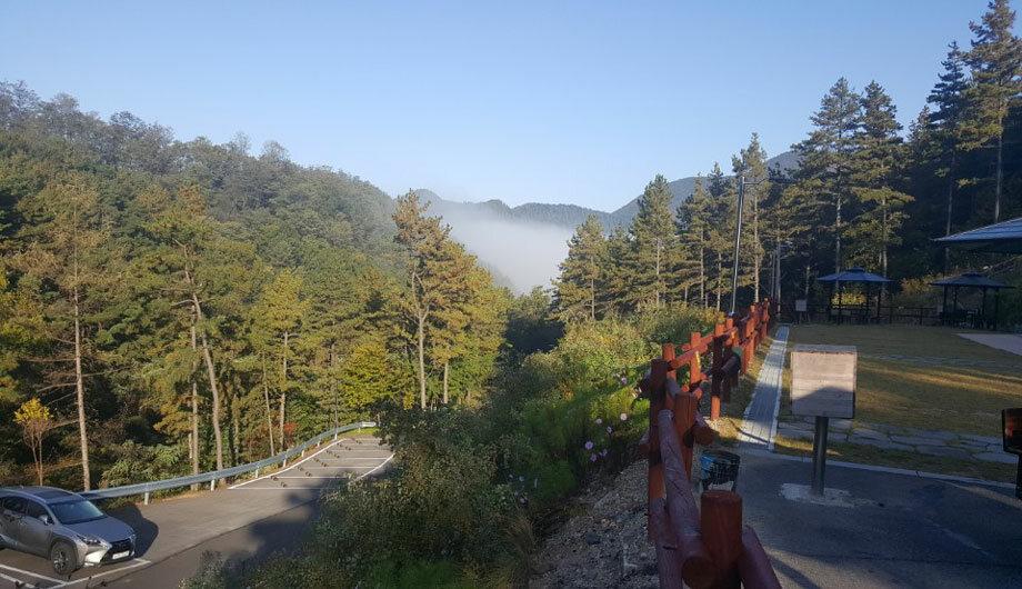 속리산 산림문화휴양관2